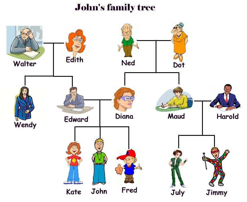 2 next activity family tree2 jpg look and make the right sentence don t